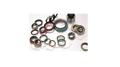 Assortment of Oil Seals