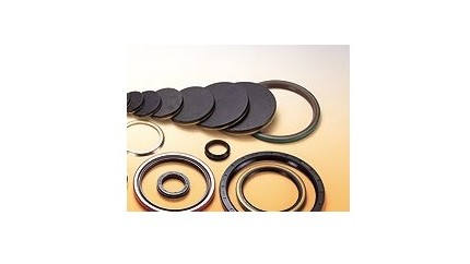 Metric Oils Seals
